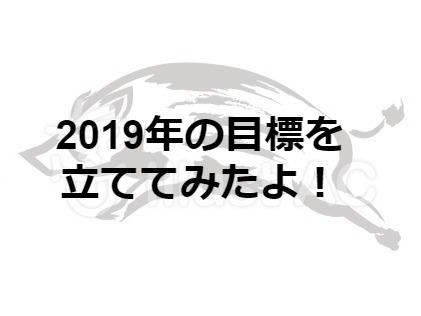 2019年の目標を立ててみたよ!