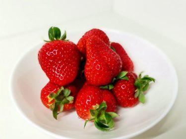 【購入レビュー】まほろばキッチン橿原店で購入したいちご『ゆめのか』を紹介するよ